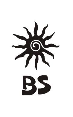 bs-masala-Logo